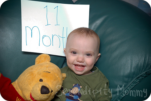 11 Months!