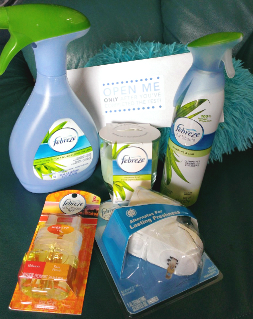 Putting My Sniffer To The Test: #NoseBlind Experiment with Febreze Review & Giveaway
