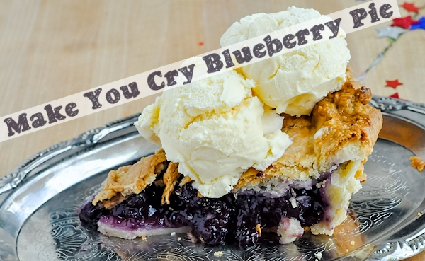 Blueberry Pie Recipe | Serendipity Mommy