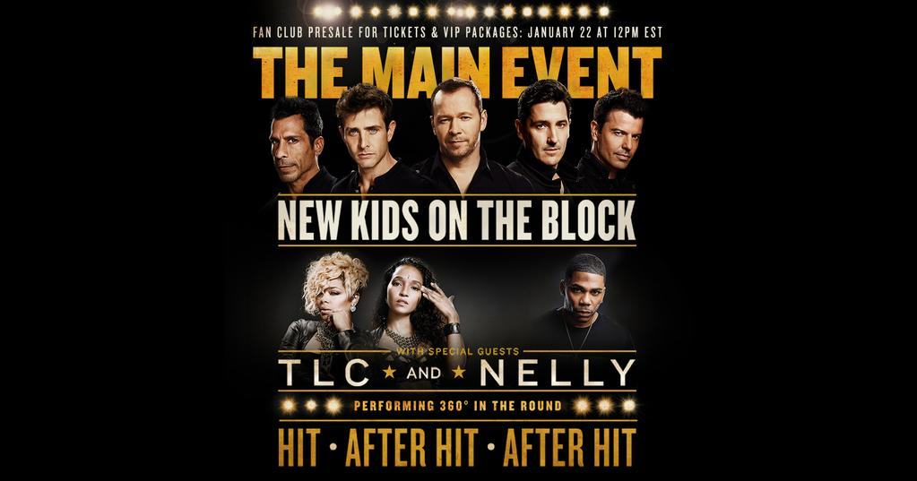 New Year, New Blog and New Kids On The Block Tour!