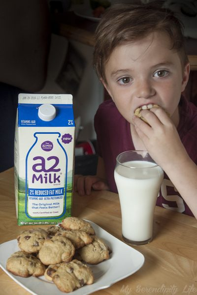 Milk and Cookies Without Tummy Troubles!